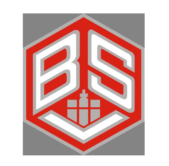 BSV Handball Hamburg
